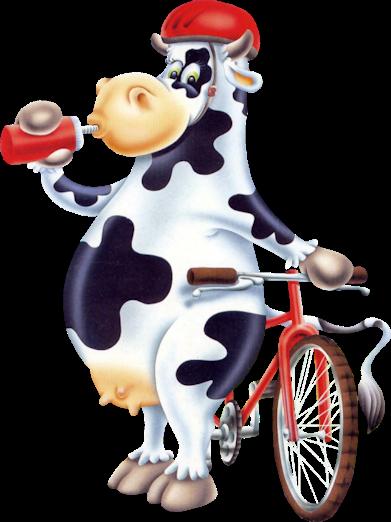 images ou dessins de vaches rigolotes  Bébés de l'année  FORUM Grossesse &
