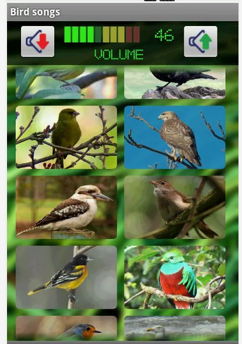 Aplikasi Android untuk Pecinta Burung Kicau