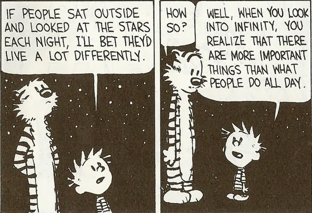 The Wisdom Of Calvin