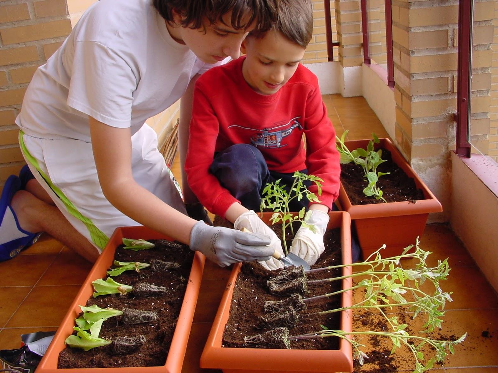 Jardineria eladio nonay mario y ra l y su peculiar huerto - Manualidades de jardineria ...