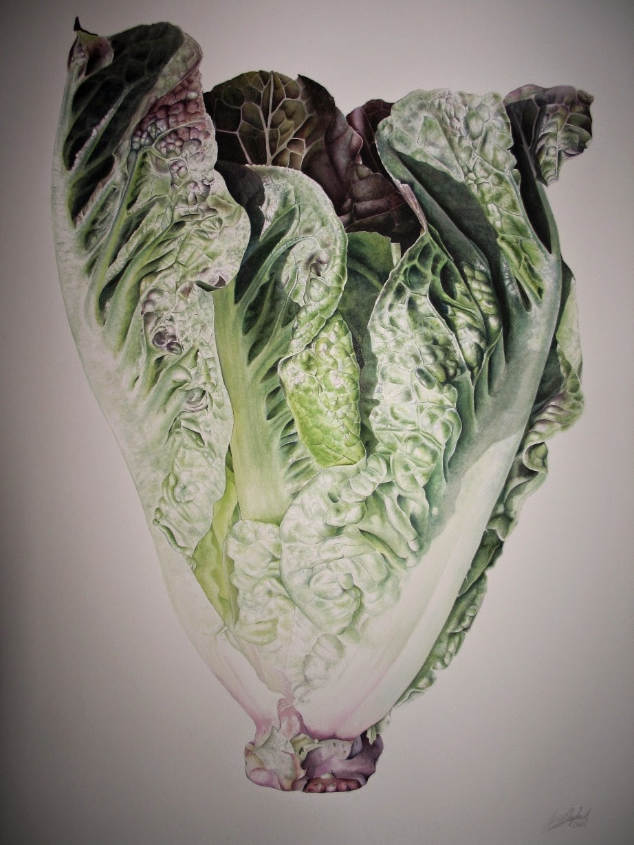 Cos the Lettuce by Jessica Shepherd, 56 x 76 cm, Inky Leaves ©