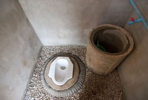 Strange and unusual toilet around the world
