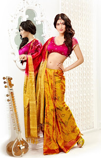 Shruti Hassan Beautiful Picture in Saree