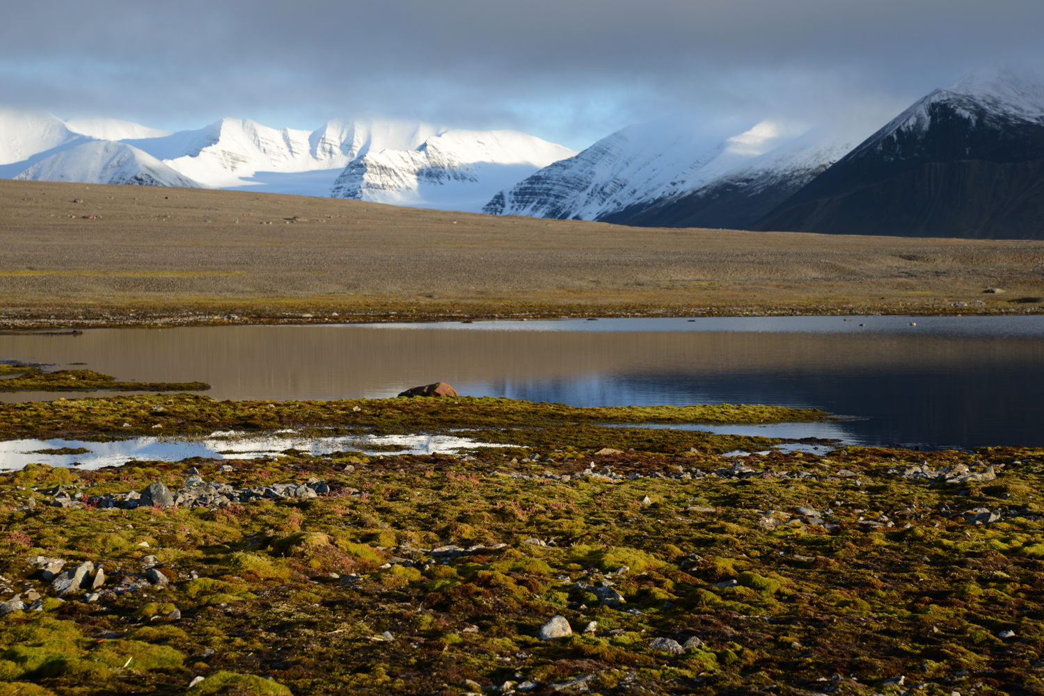 Alaska permafrost thawing, Siberia frozen peat bogs Pictures of tundra climate