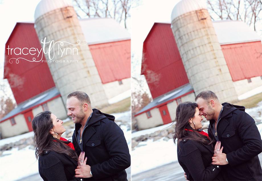 northville mi engagement picture photographer