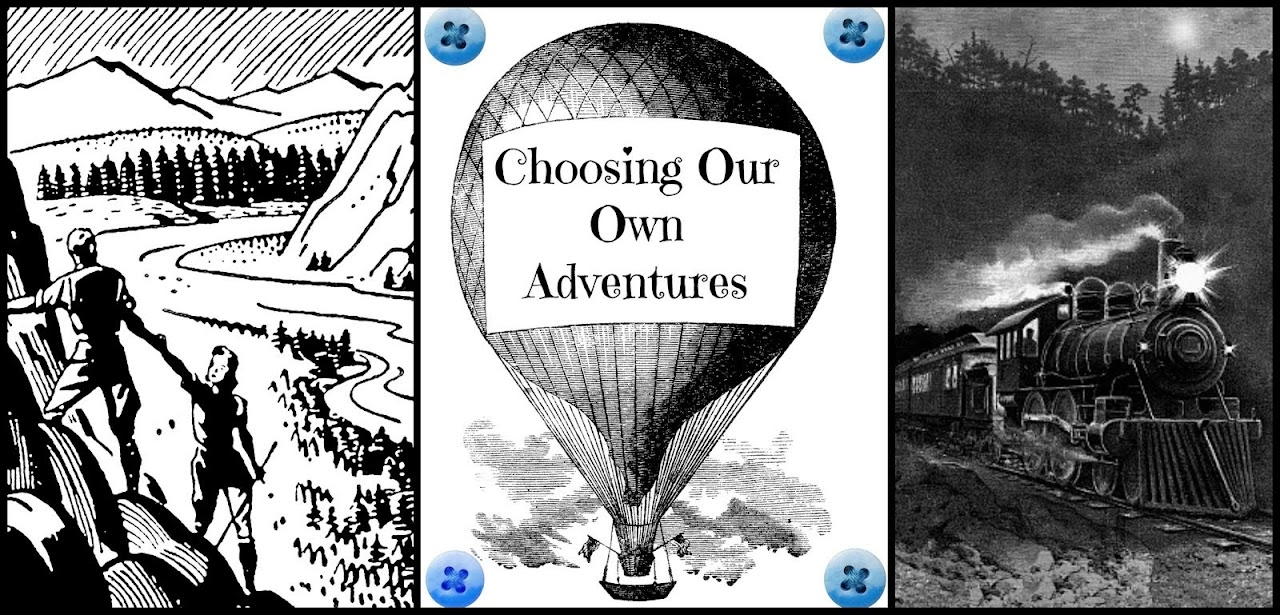 Choosing Our Own Adventures