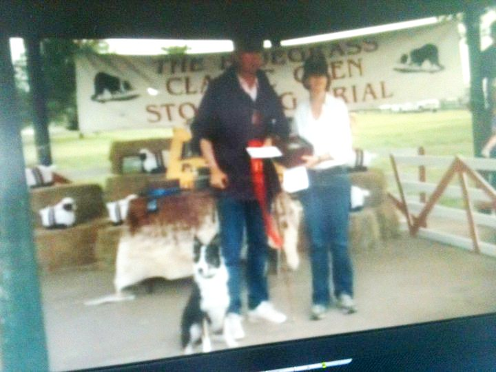 stockdog trial held this