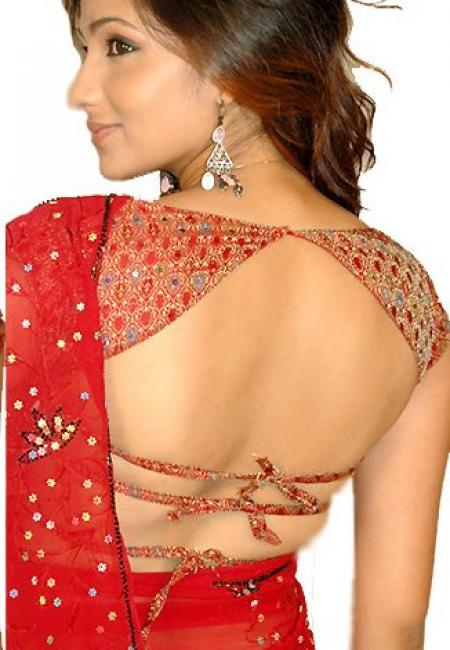 Latest Choli Blouse Designs 46