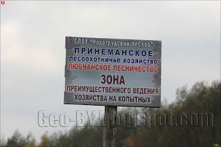 ГЛХУ Новогрудский лесхоз, Принеманское лесоохотничье хозяйство, Любчанское лесничество