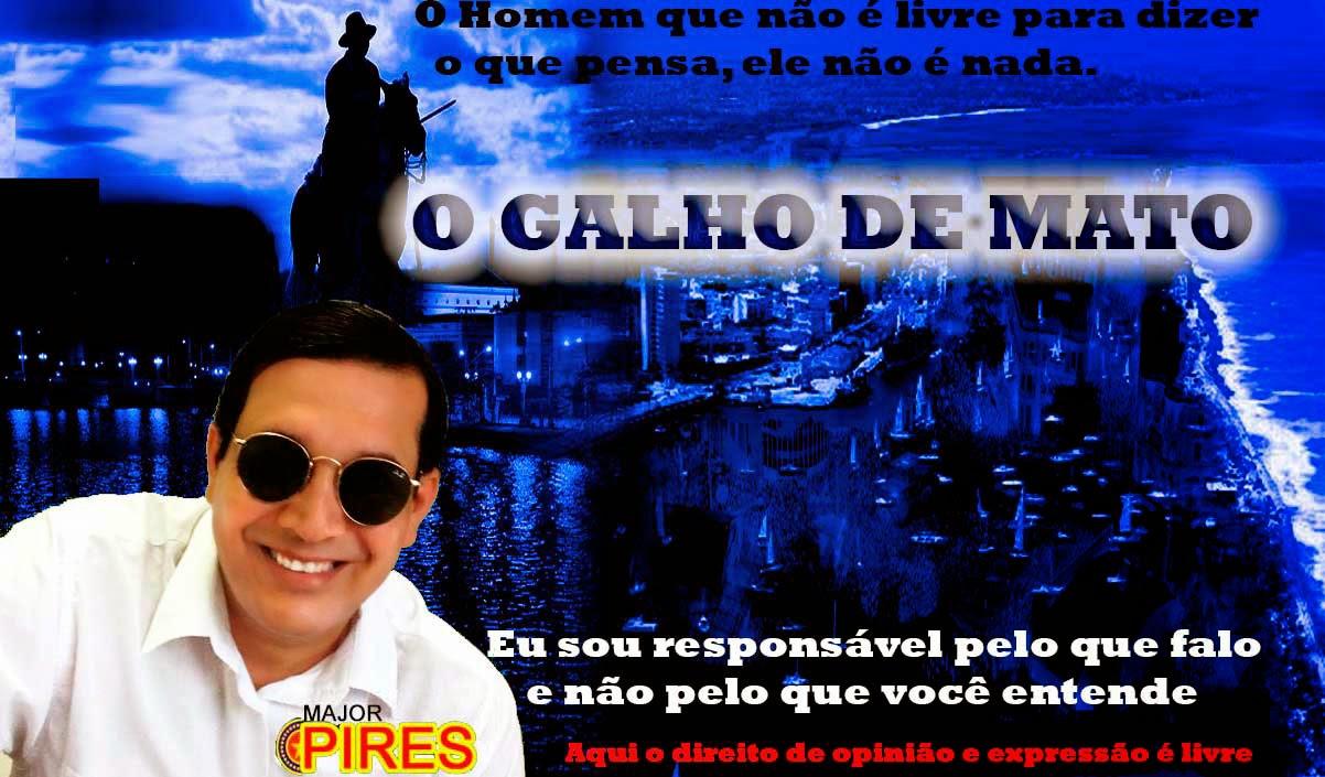 O GALHO DEMATO