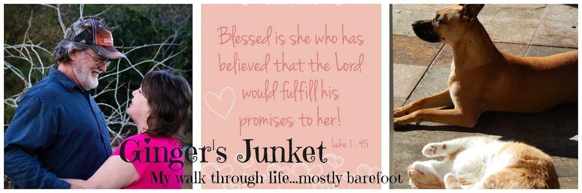 Ginger's Junket