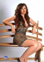 ملكة جمال مصر 2008