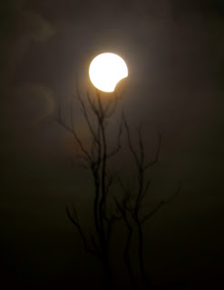 Nah, diatas adalah f o to-foto Gerhana matahari yang diambil oleh sang ...