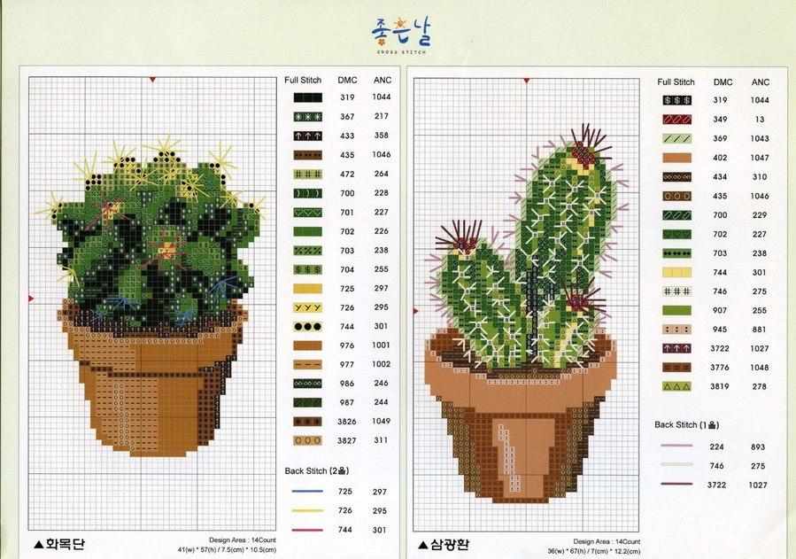 Schema punto croce - vasetti con piante grasse e cactus in fiore