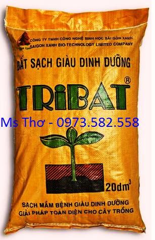 Đất Tribat 20dm giá 65.000đ