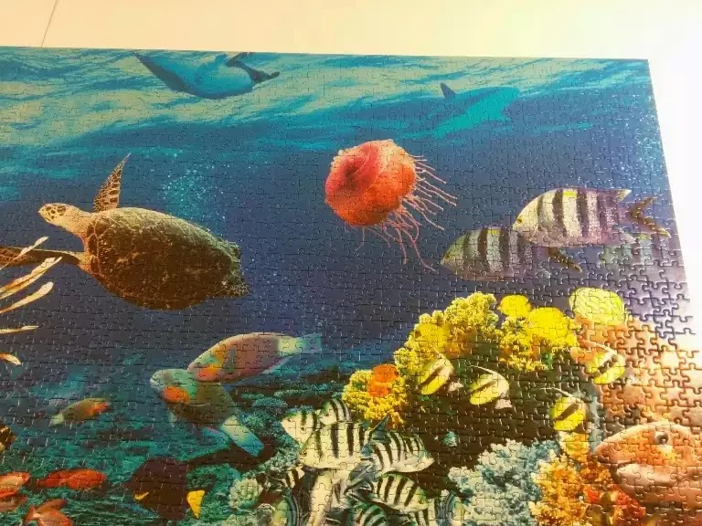 Ravensburger Under the Sea 5000 piece jigsaw puzzle close-up 6