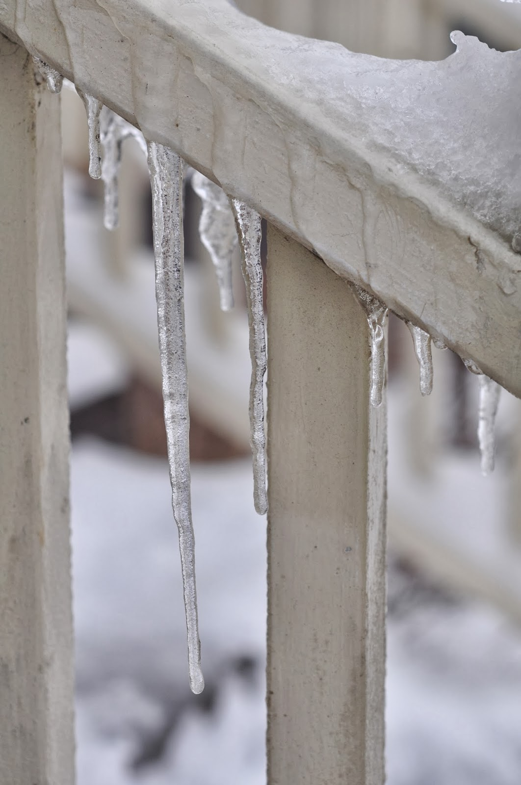 Icicles in Portland Oregon
