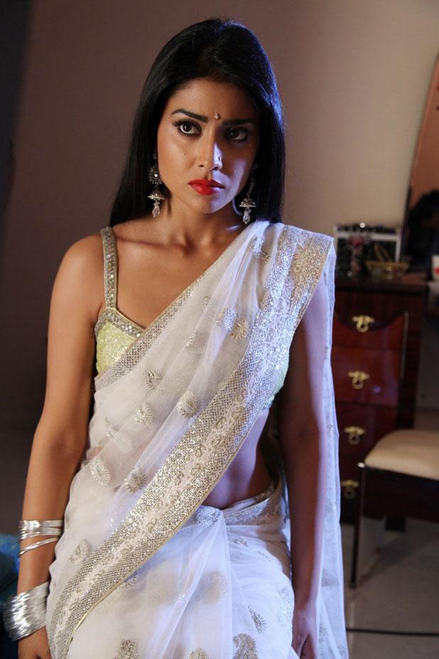 shriya in saree stills