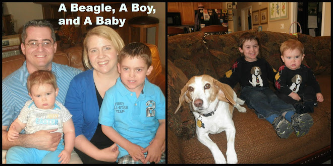 A Beagle and A Baby