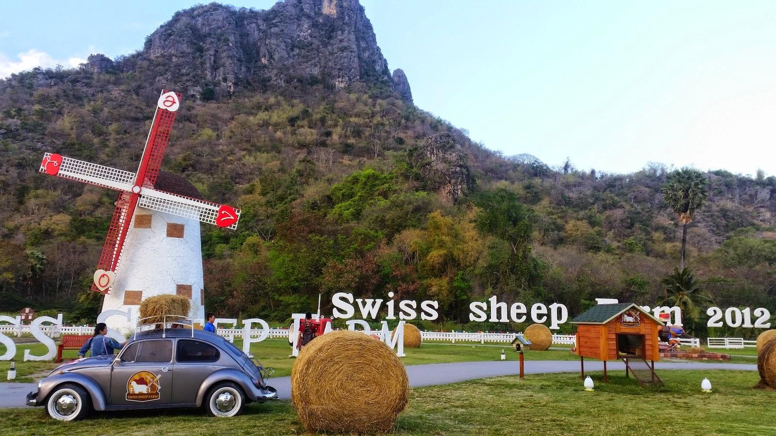 Swiss sheep ชะอำ