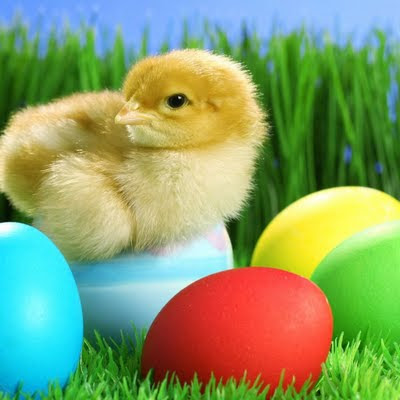 Easter gift e-cards download free wallpapers for Apple iPad