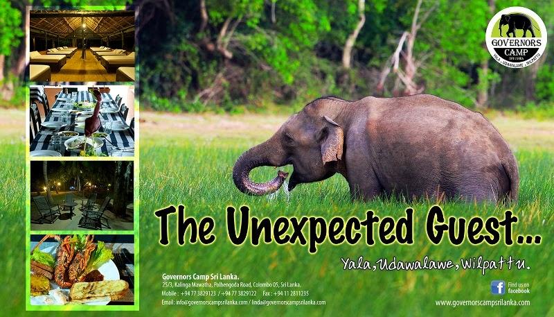 www.governorscampsrilanka.com