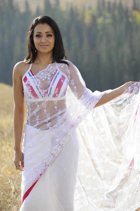 trisha in transparent saree unseen pics