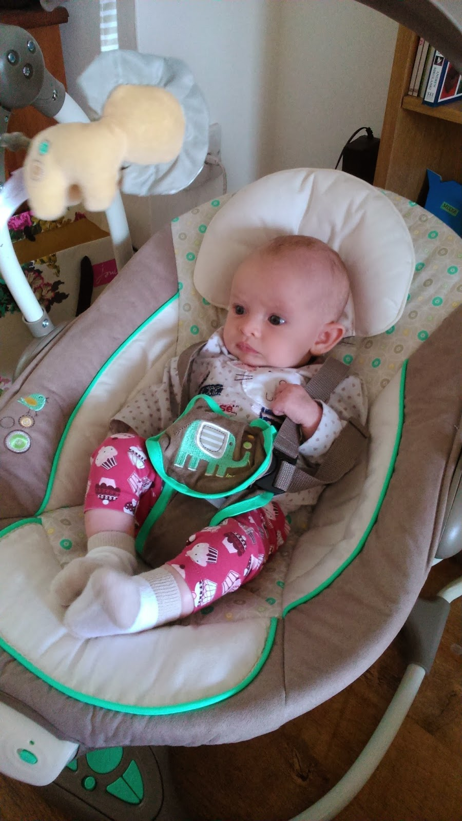 Bouncer For Older Baby Amazon Com Einstein Bright Starts Ingenuity Smartbounce Automatic Winslow Swing And In One It S Swing2seat Review Mummy