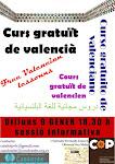 Curs de Valencià