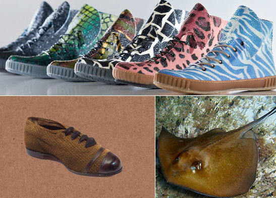 photos of stingray hide leather sneakers and shoes by rayfish footwear