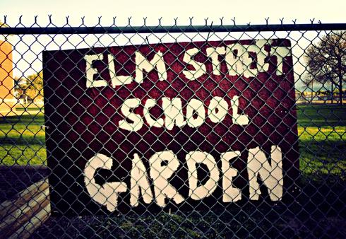 elm street school garden medicine hat alberta photography