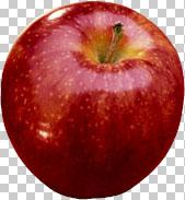 Teknik Cropping dalam  Photoshop