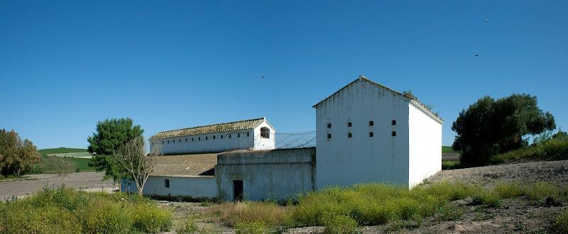 Casas del Palomar (Cortijo 'Arroyo Dulce')