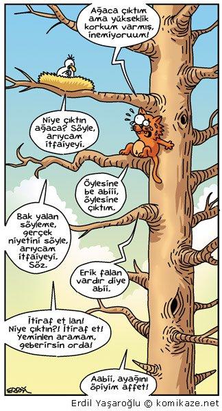 niye çıktın lan ağaca - erdil yaşaroğlu