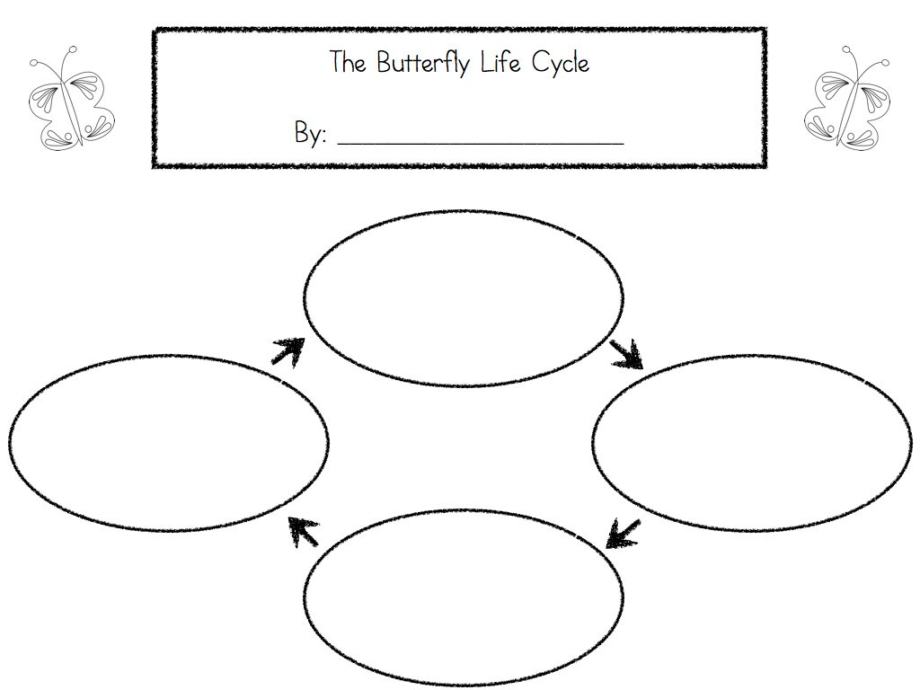 Worksheets Life Cycle Of A Butterfly Worksheet lifecycles lessons tes teach ms lilypads littles life