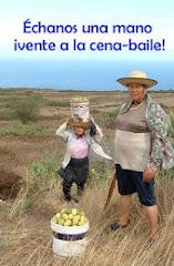 CENA- BAILE PARA RECAUDAR FONDOS