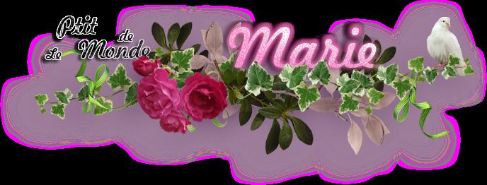 Le Ptit Monde de Marie