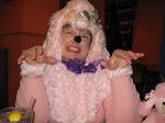 I'm a pink poodle!