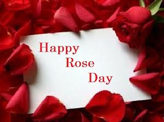 rose day whatsapp dp pics