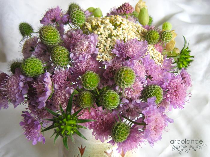 Petite mafalda arbolande las flores m s bonitas del mundo - Flores mas bonitas ...