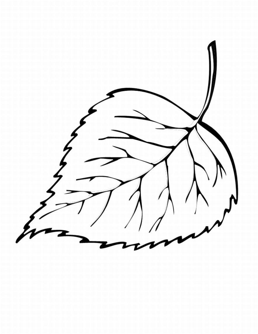 Cuenta los 100: Colorear hojas de Otoño