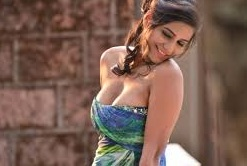 Screen shot Hot Hindi {2013} Nasha HD 720p Full Movie free Download