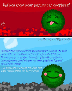 Marimo Summer Heat Warning; several techniques on helping your marimo beat the heat. Night Sea 90.