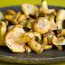 VI Curso de Identificação e Conservação de Cogumelos