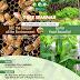 FREE Seminar: Beekeeping and Aquaponics