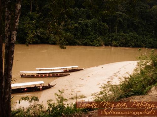 Taman Negara Pahang Malaysia, Tempat menarik di Pahang, Aktiviti yang boleh dilakukan di taman negara pahang, Pemandangan di Taman Negara Pahang, Poskad Tempat Menarik Di Malaysia, Poskad Taman Negara Pahang, Gambar Taman Negara Pahang
