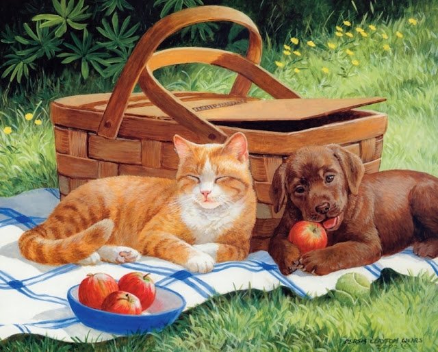 рыжий кот и щенок на пикнике