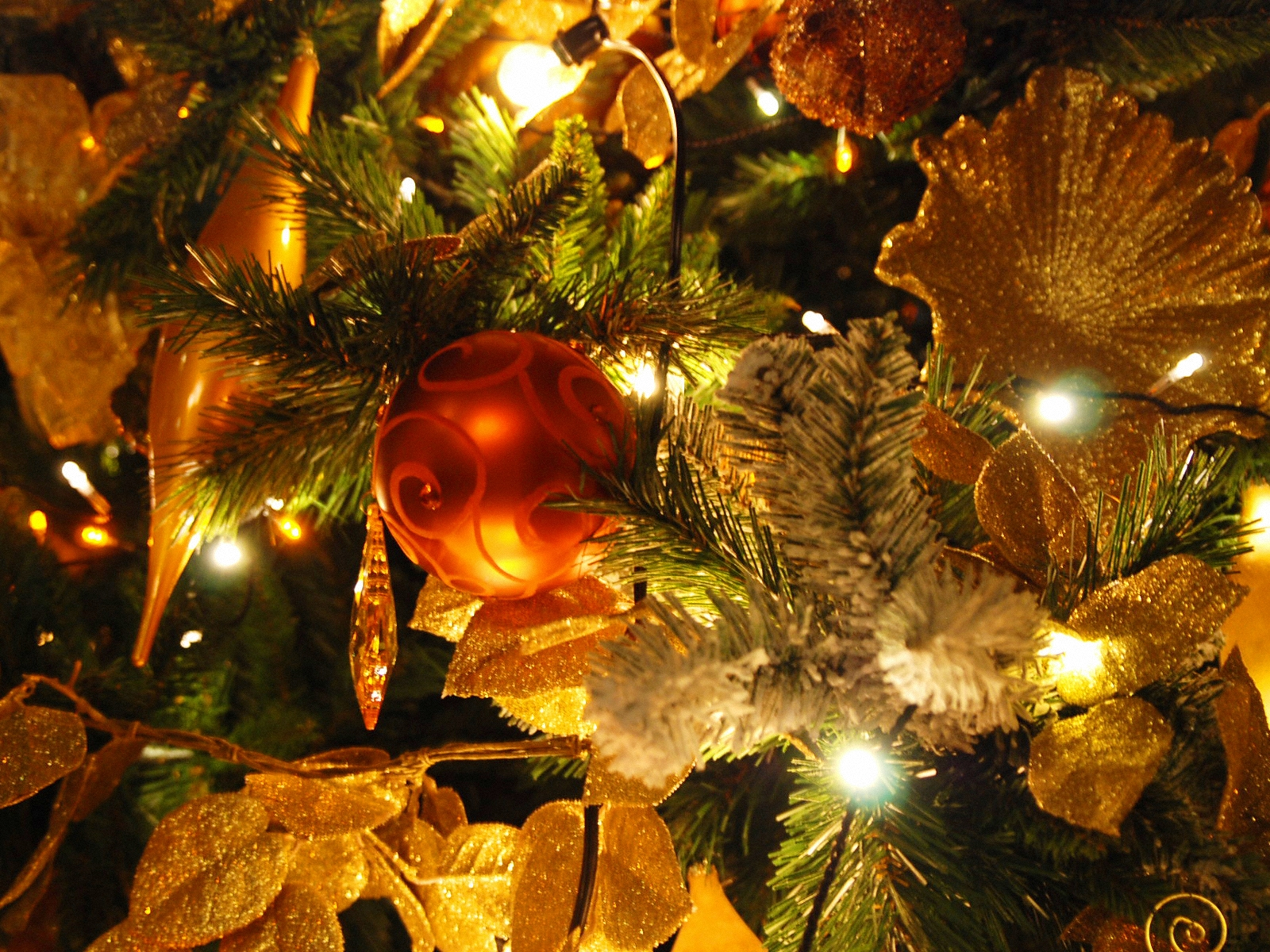 christmas tree shop sceneries you might also like