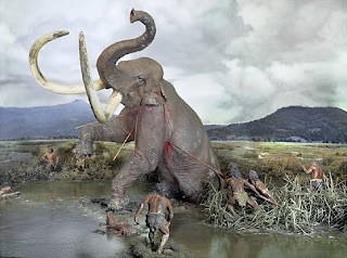 Hunting a mammoth
