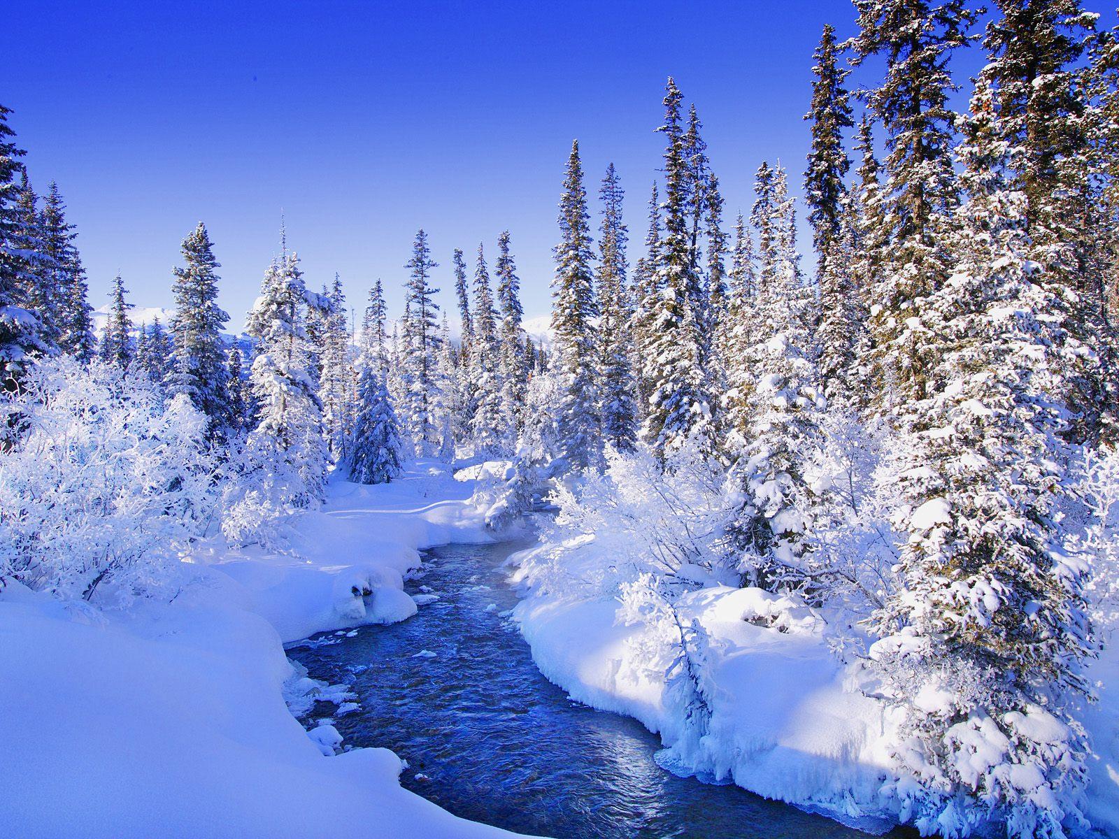 зимний фон обои